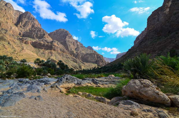 Wadi Al Arbaeen (10)