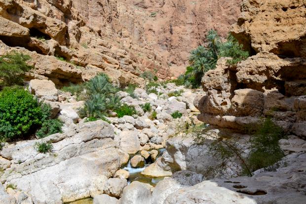 wadi-shab-9