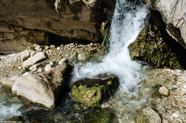 Wadi Bani Khalid (5)