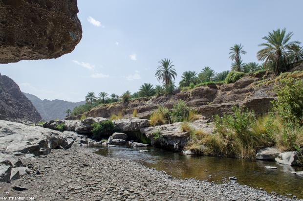 Wadi Dima (3)