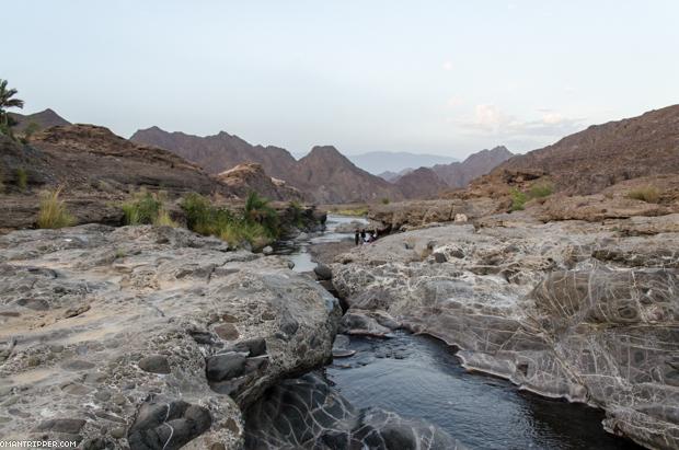 Wadi Dima (8)
