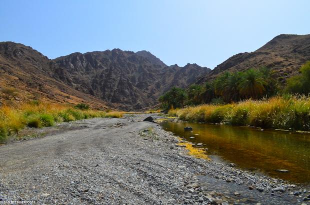 Wadi Al Abyad (1)