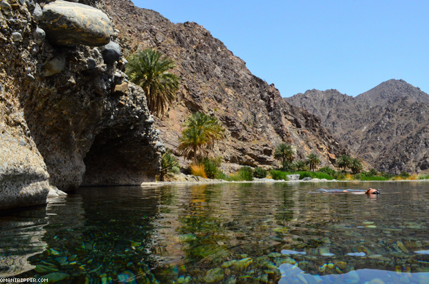 Wadi Al Abyad (6)