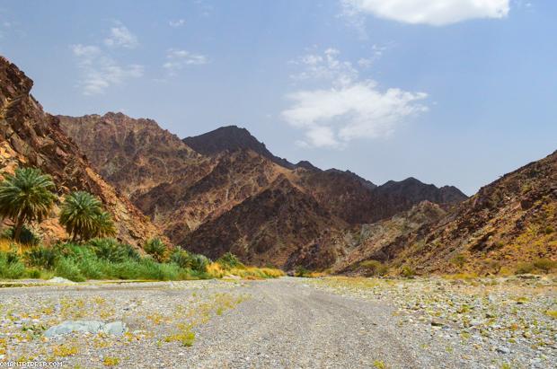 Wadi Al Abyad (9)