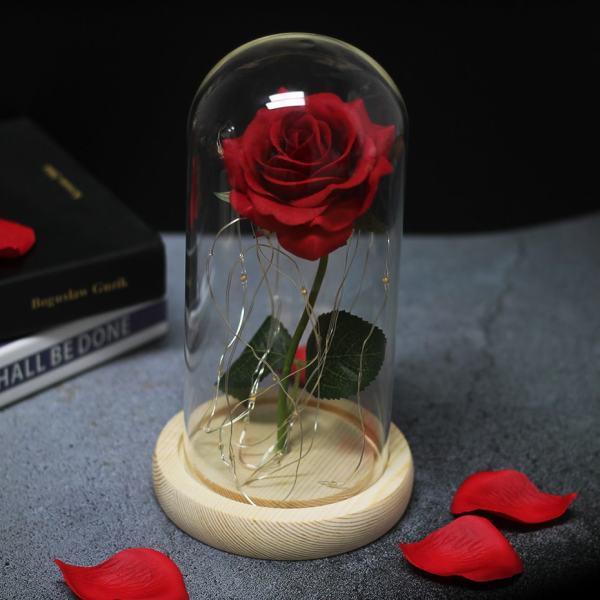 rose éternelle illuminé décoration saint valentin