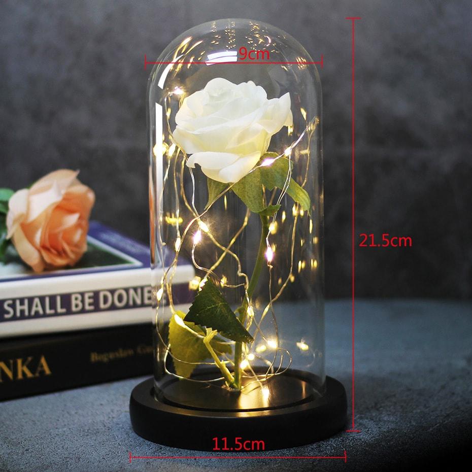 rose éternelle illuminé dimensions saint-valentin