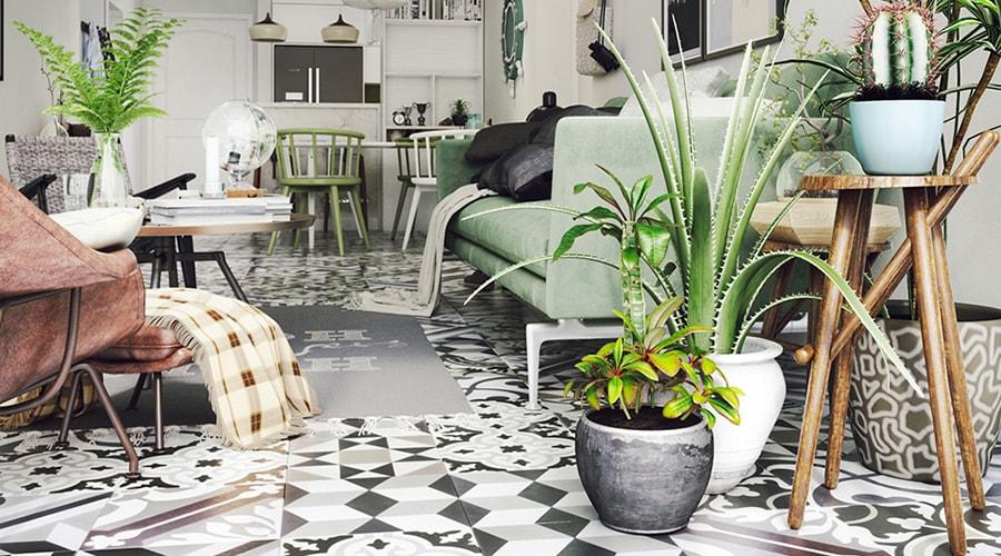 plantes intérieur conseil décoration