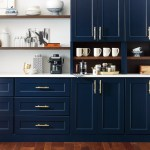 Butler S Pantry With Custom Blue Cabinets Omega