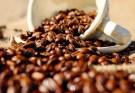 Manfaat minyak kopi dan cara membuatnya