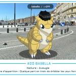20 - Sabella