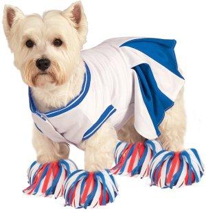 Cheerleader Pet Costume