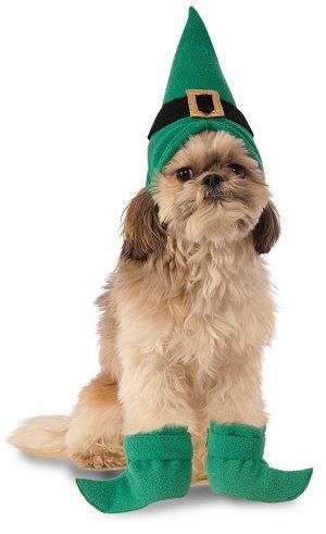 Leprechaun Dog Costume with Elf Boots
