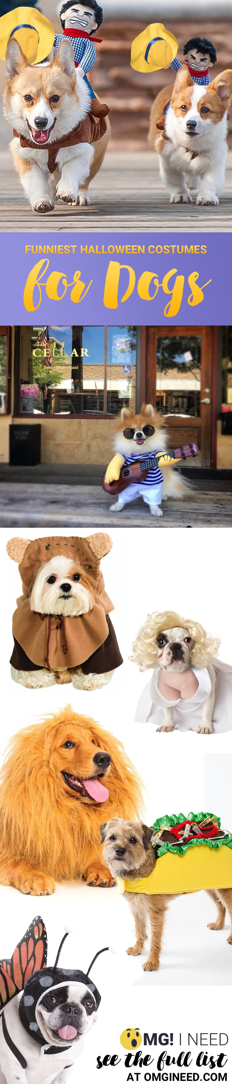 This list has 65+ of the most creative dog costumes out there! Great source for pet costume ideas. One of the best lists I've seen of Halloween costumes for dogs!