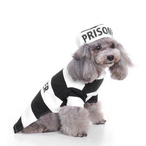 Jailbird Dog Costume