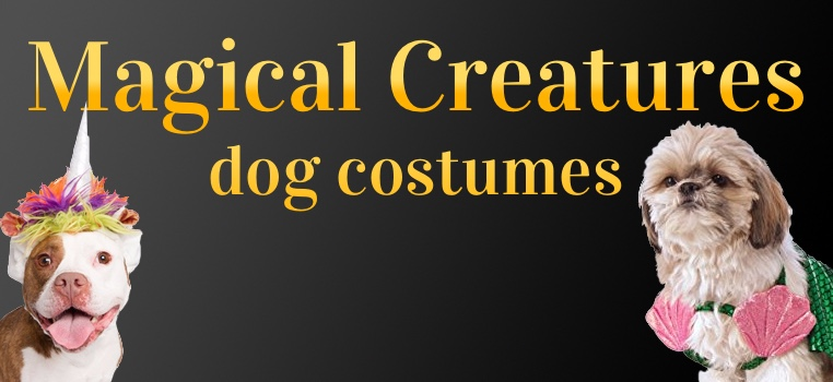 Magical Creature Dog Costumes