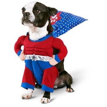 Superhero Dog Costume