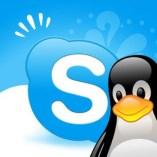 Skype 4.3 voor GNU/Linux