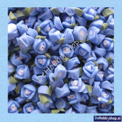 roos-blauw--3-mm