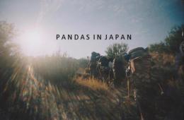 pandas in japan