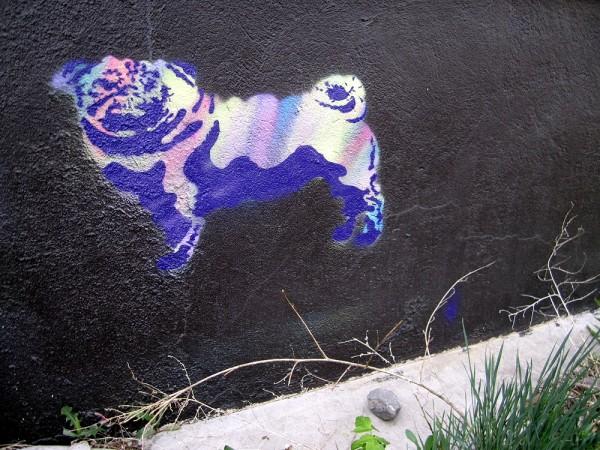rainbow pug streetart