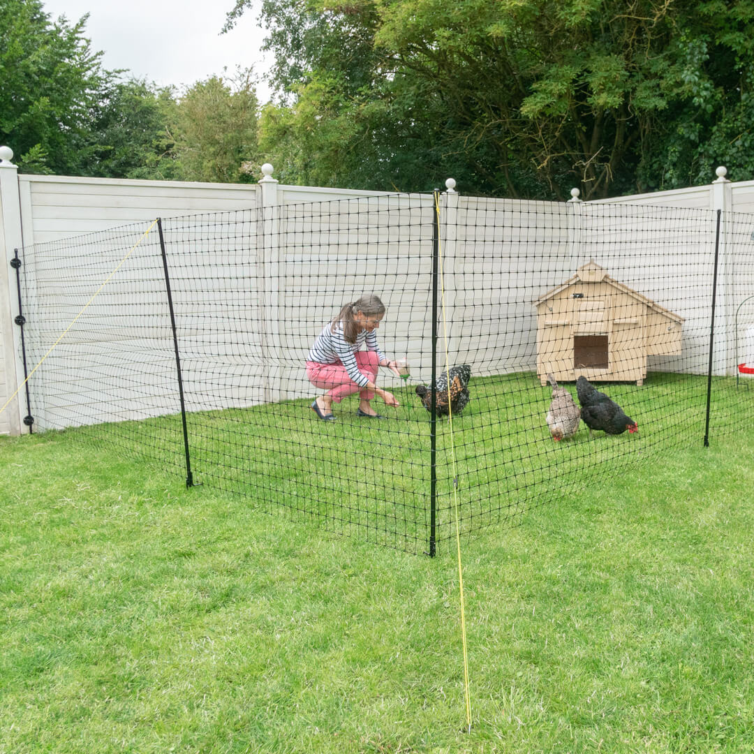 Omlet Chicken Fencing Poultry Netting For Chickens