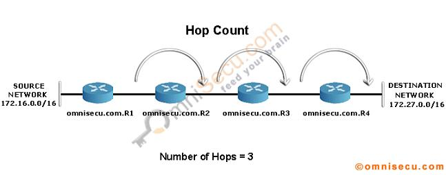 RIP Hop Count Lab