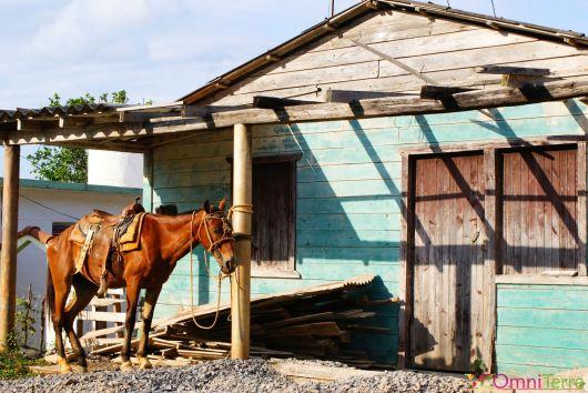 Cuba - Viñales - Cabane