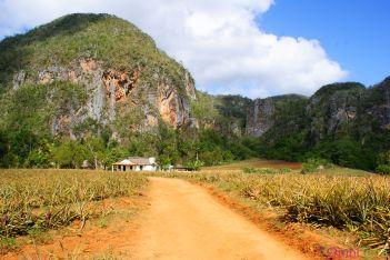 Cuba - Viñales - Parc