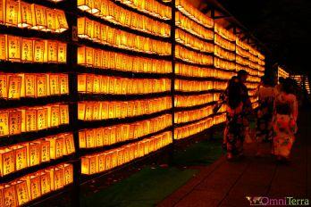 Japon - Tokyo - Mitama Matsuri - Lumières