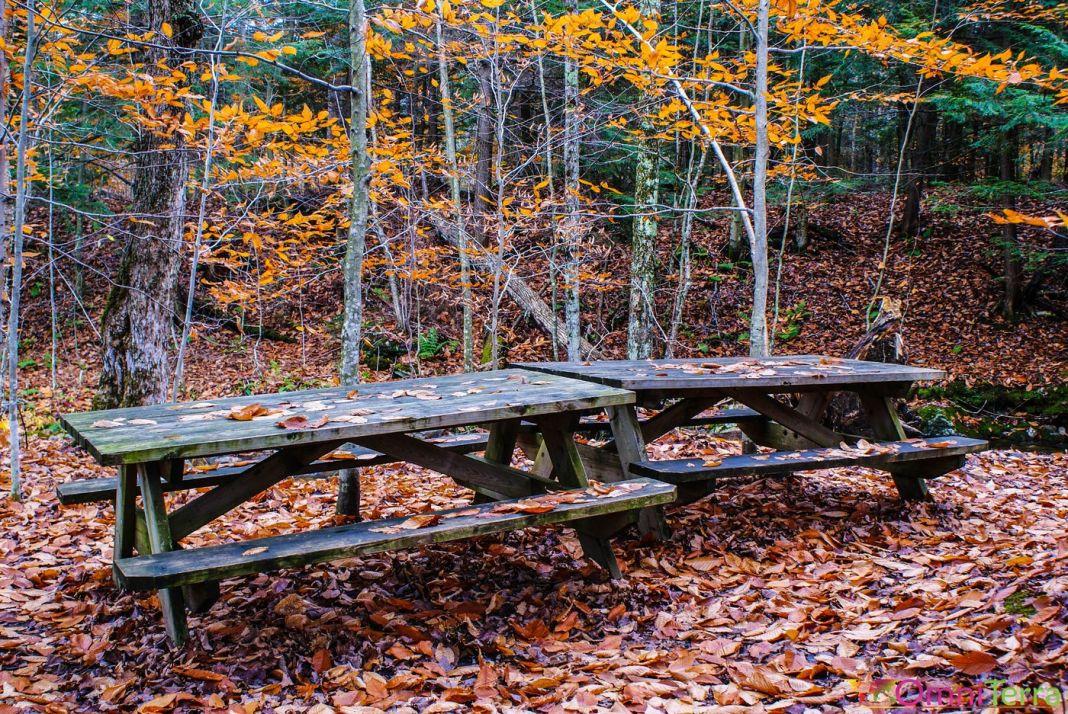 Estrie - Parc du mont Orford - Tables
