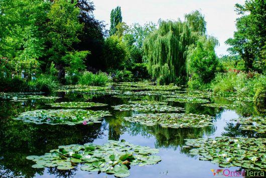 Normandie - Giverny - Jardins de Claude Monet