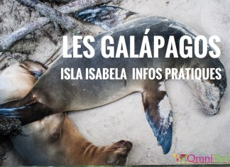 galapagos-isabela-otarie-cover