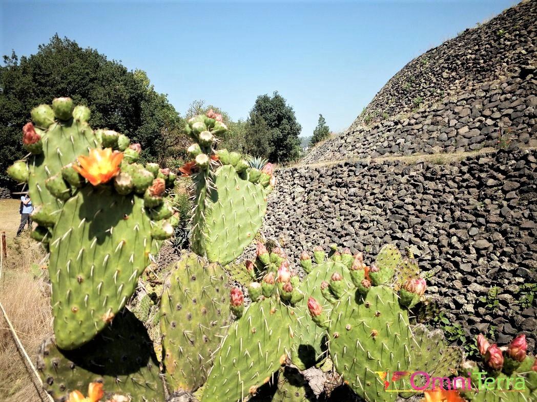Mexico - Cuicuilco