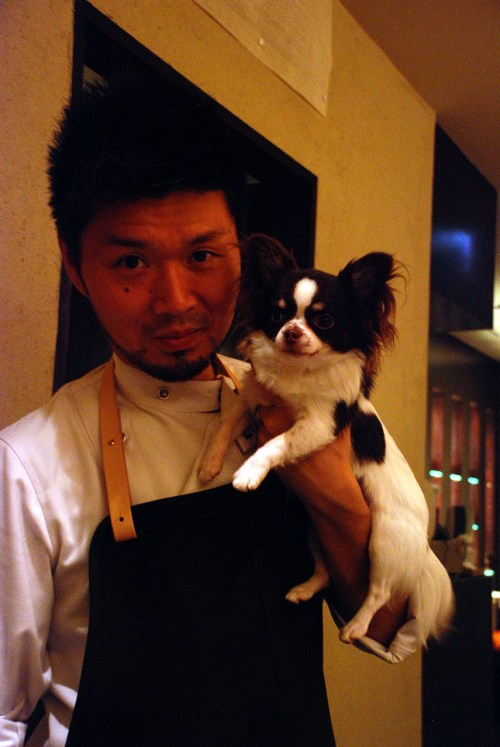 Om Nom Nomad - Japanese dogs and one more animal you wouldn't expect to see on the streets
