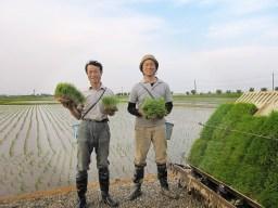 もち粉、しん粉は森林農園自社生産の美味しいコシヒカリ・こがねもちを100%使用!