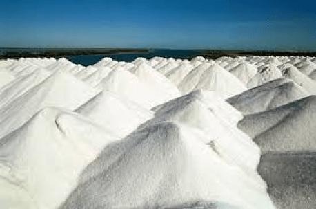 Resultado de imagem para Vereadora Sandra Rosado teme perda de empregos no setor salineiro