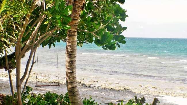 Nikoi's beach swing