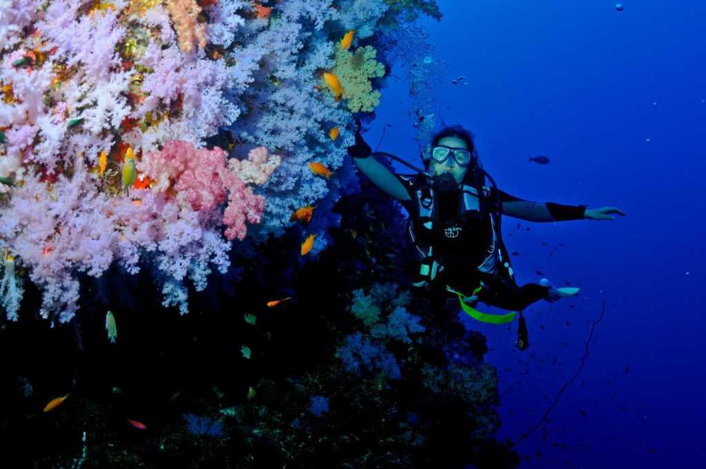 Diving in Fiji