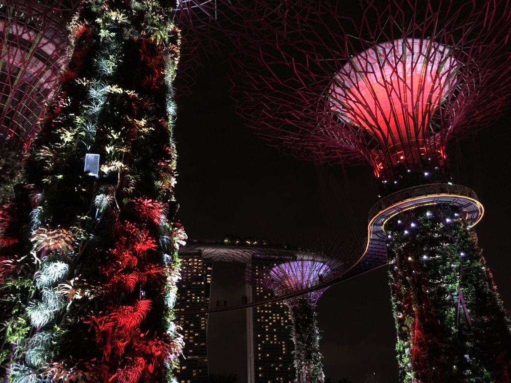Gardens by the Bay during Chinese New Year in Singapore