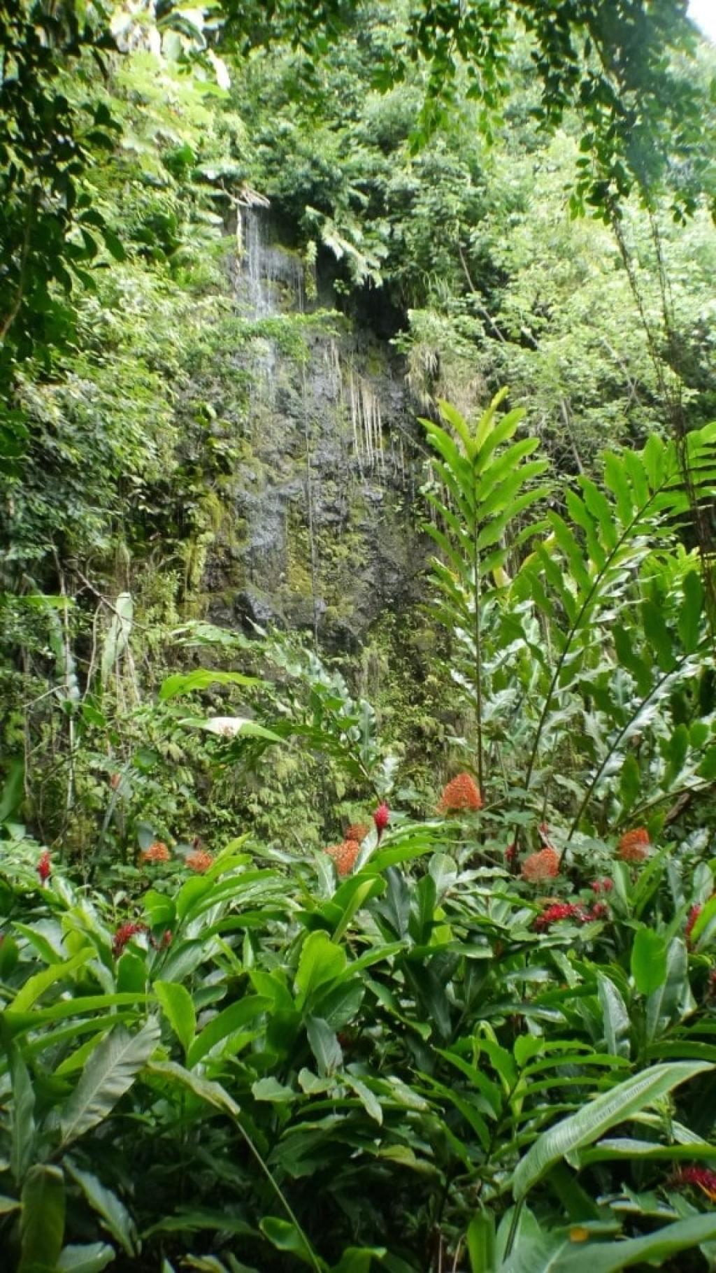 Grotto de Marae