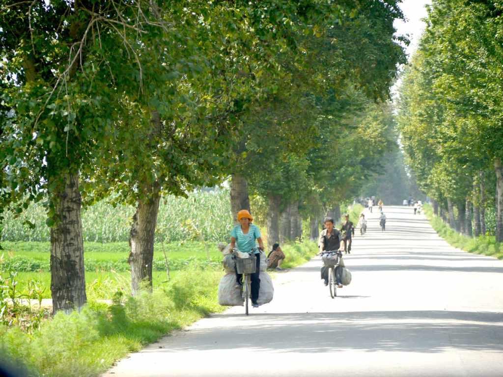 Cycling everywhere
