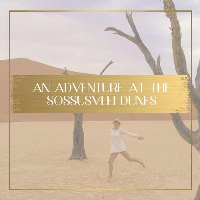 Sossusvlei Dunes feature