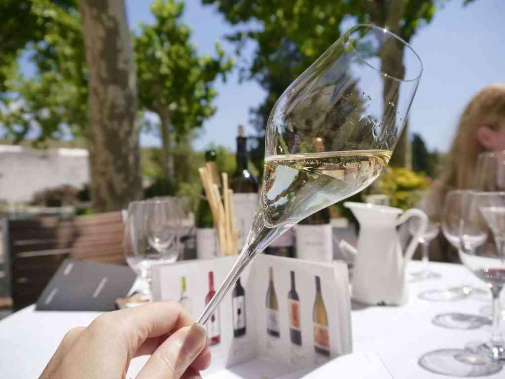 Albet i Noya wine tasting