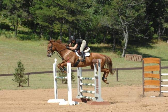 """Horse riding'"