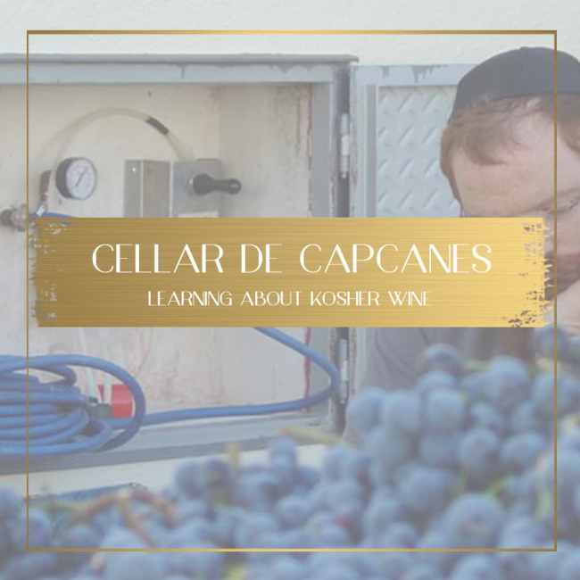 Cellar de Capcanes feature