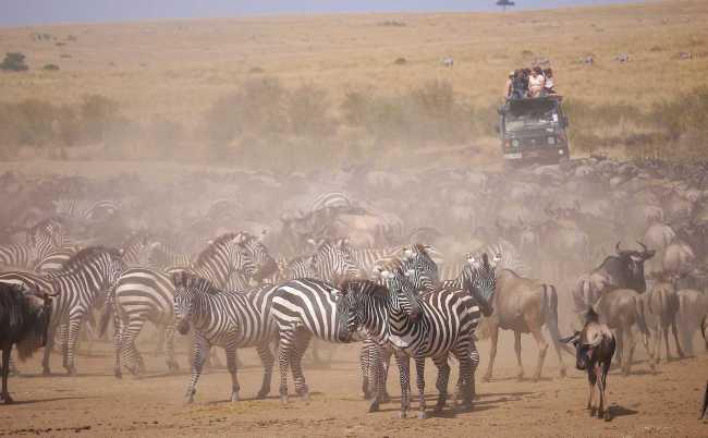 Oldest safari company at Masai Mara