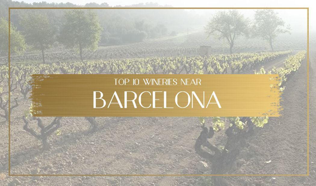 Wineries Near Barcelona Main