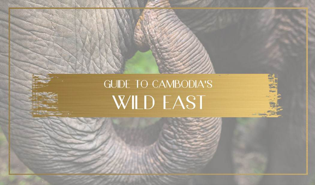 Wild east of Cambodia Main