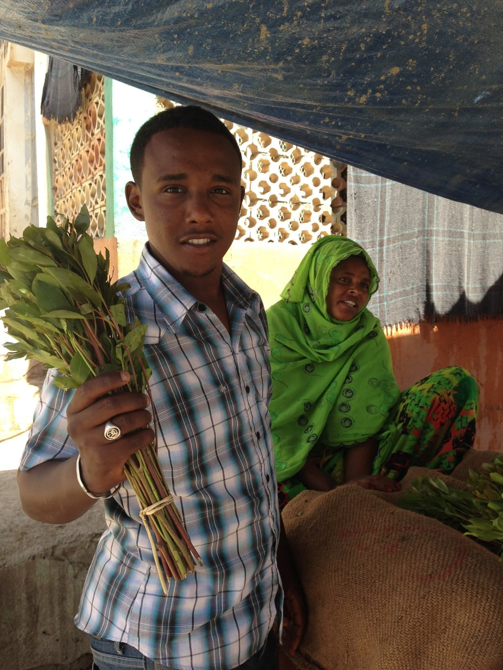 """Khat vendor in Djibouti"""