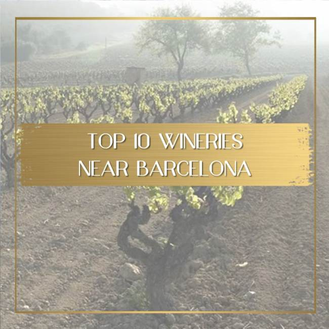 Wineries near Barcelona feature